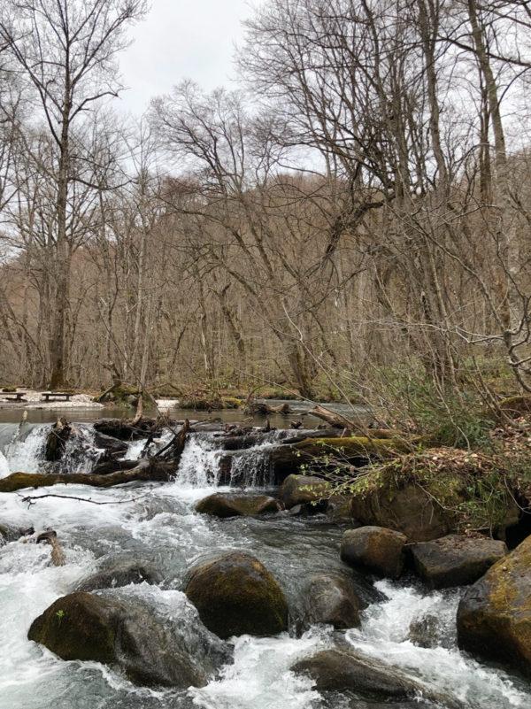 十和田湖,奥入瀬渓流