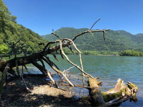 日光湯元キャンプ場,ファミリーキャンプ,子連れキャンプ,湯ノ湖