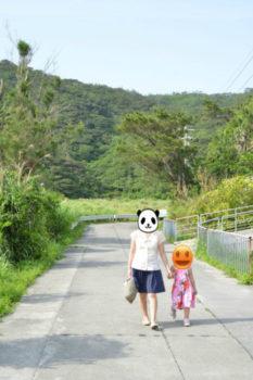 座間味島,沖縄,離島