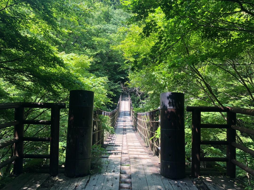 花貫渓谷,吊り橋
