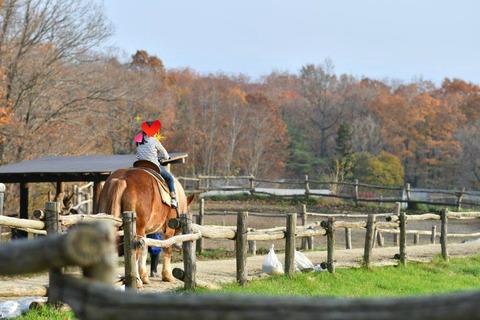 那須,南ヶ丘牧場,子連れ旅行,家族旅行,乗馬