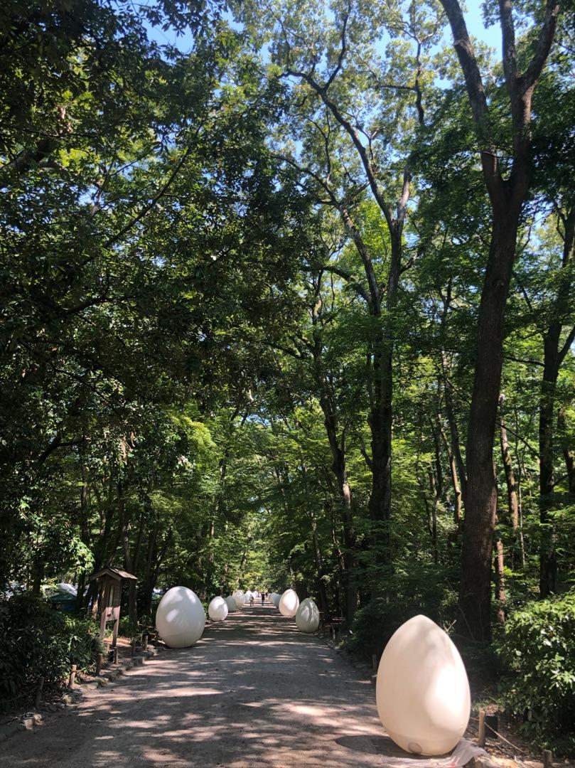 京都,下鴨神社,京都観光,糺の森の光の祭,チームラボ,ライトアップ,京都イベント